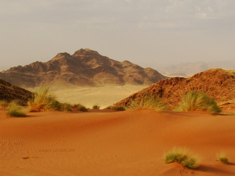 Desert Photography.  Pretty colors abound in this desert picture.