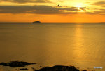Steep Holm, Bristol Channel, England.  Gorgeous sunsets.  Nature picture.
