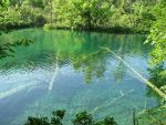 Pond in Croatia, swim, snorkel, scuba. Nature picture.