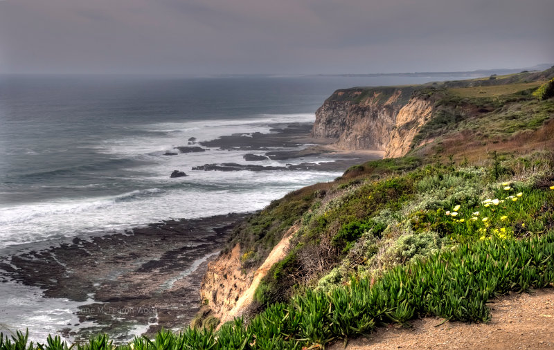 Central Californian Coast, Gray Whale Cove State Beach.