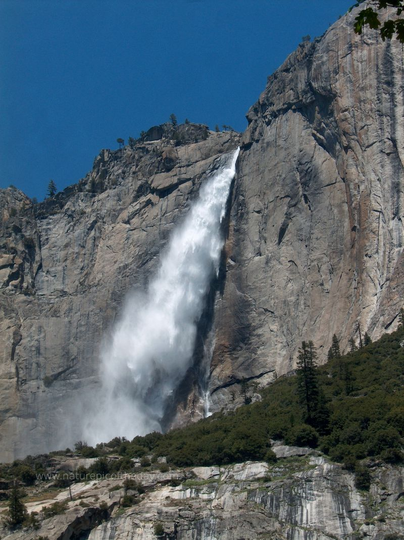 Yosemite Falls.  Yosemite National Park.