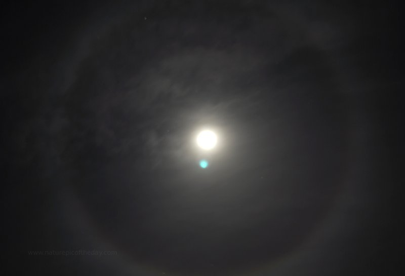 Circular Halo, full moon, blue moon.