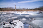 ice covered marsh in Black Creek Marsh, near Albany, New York.