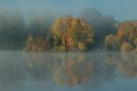 mist covered pond in the fall