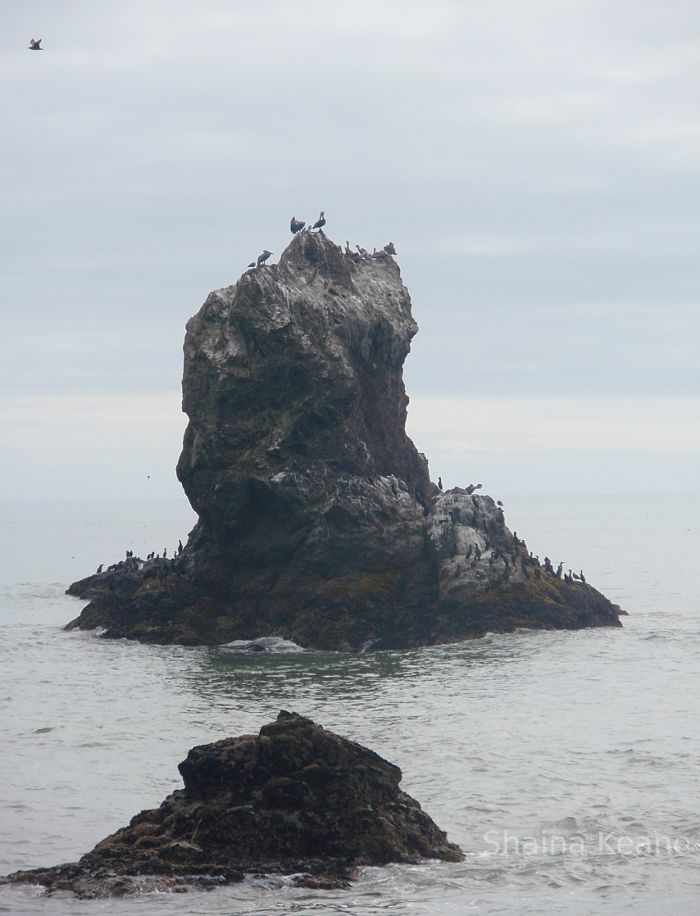 Rock Pillar in the ocean.