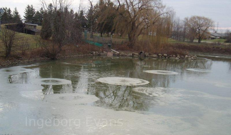 Ice circles on a pond in Canada