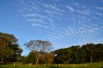 Beautiful meadow and sky in Brazil