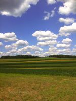 Farmland in Pennsylvania