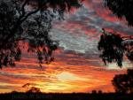 Gorgeous sunset over the Australian Outback