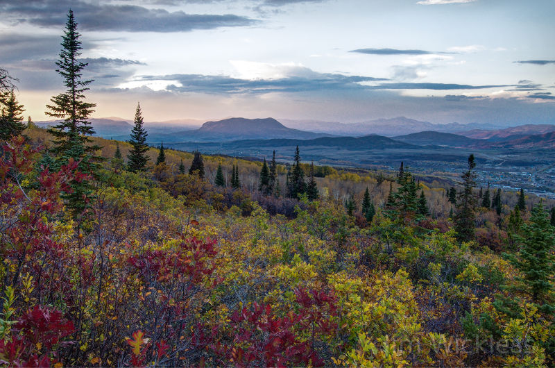 Gorgeous Autumn landscape in Steamboat Springs, Colorado