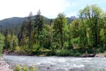 River on Olympic Peninsula, Washington State