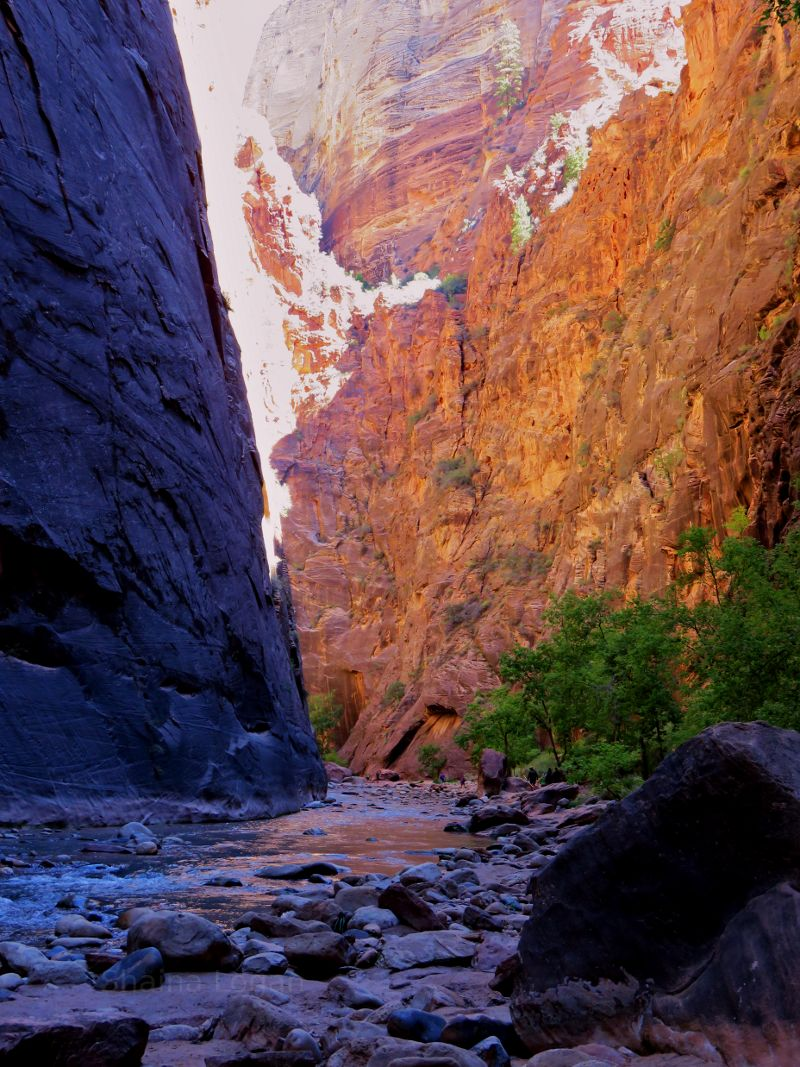 The mountains are calling | Zion national park