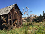 Old barn in Idaho