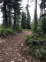 Hiking Trail in Idaho