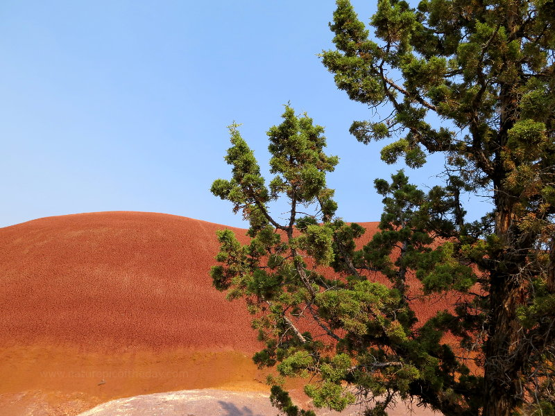 Red Hill in Oregon