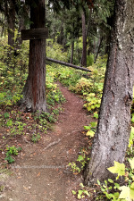 Mineral Point Trail, Lake Pend Orielle, Idaho