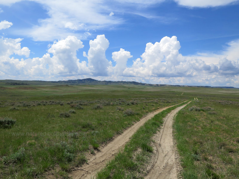 Jeep Trail in Eastern Montana