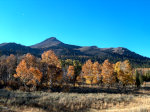 Fall in the High Sierra